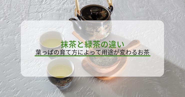 抹茶と緑茶の違い